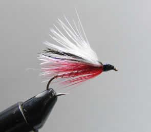 Streamer fishing for Michigan steelhead- fly patterns